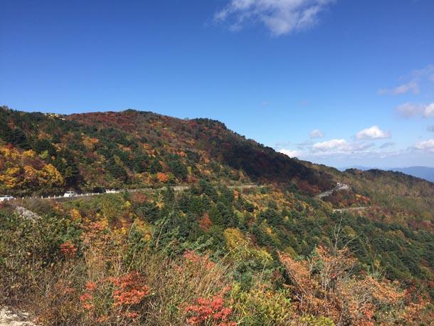 福島でいま一番〝秋″な場所へ