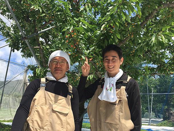 収穫間近!~みんなの果樹園~